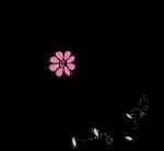 Flor.O